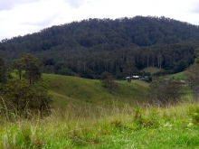 View towards the cottages from Pretty Valley