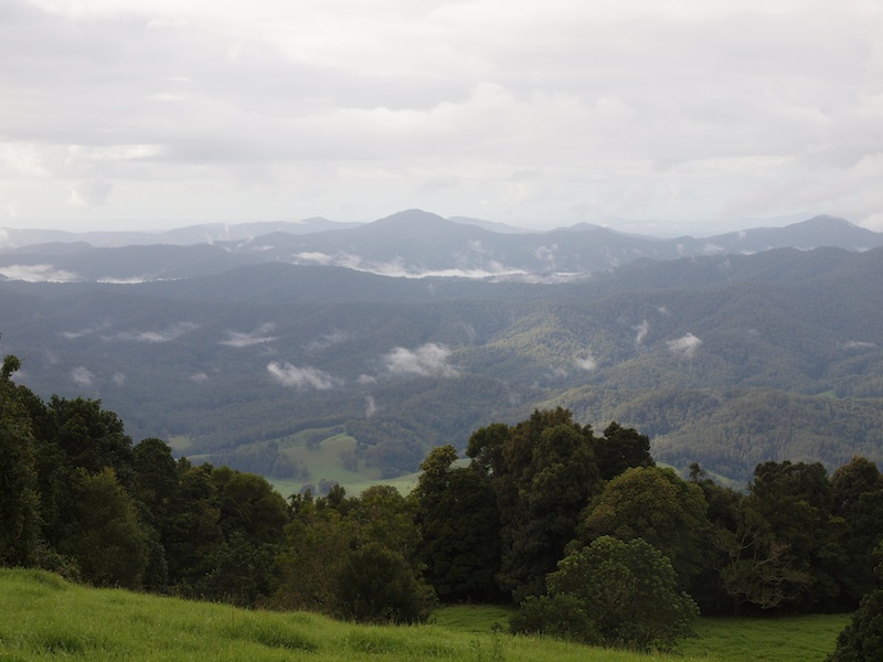 View towards Malibells from Griffith Lookout Dorrigo